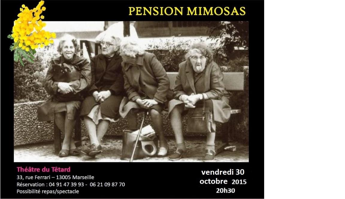 Pension Mimosas - théâtre du Têtard - Stéphane Gisbert