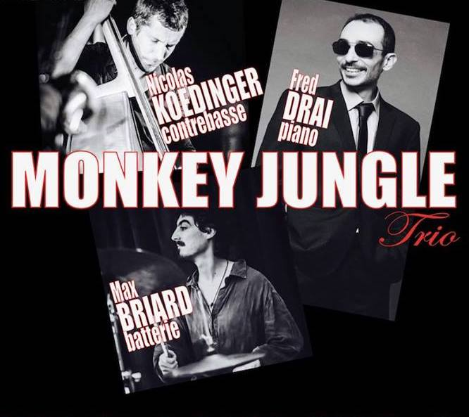 monkey jungle trio